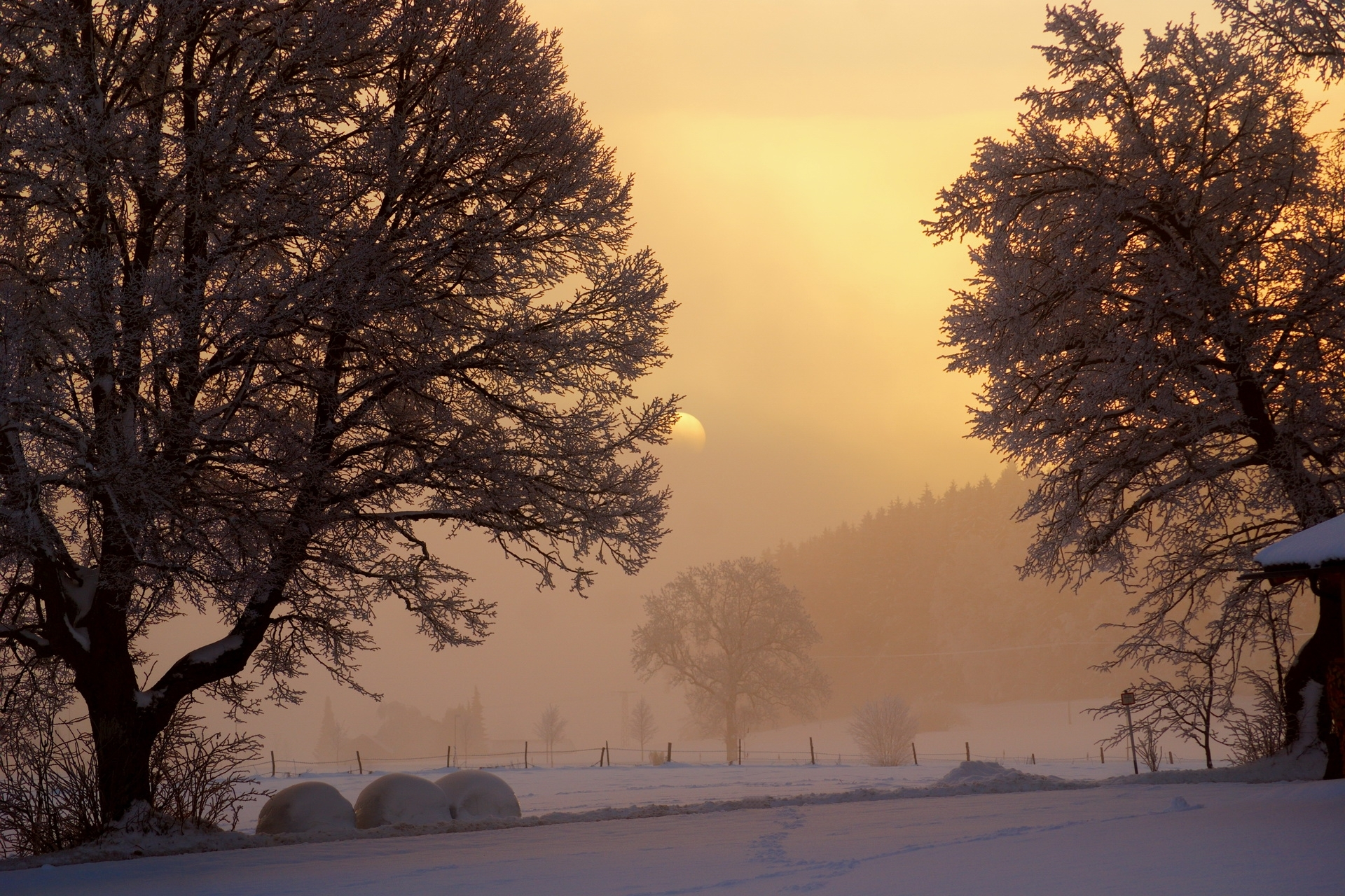 winter-dawn-on-a-farm-324123